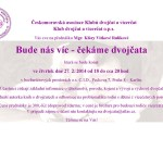 Dvojcata_CID_27022014