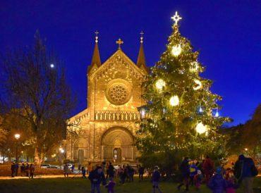 Rozsvícení vánočního stromu v Karlíně